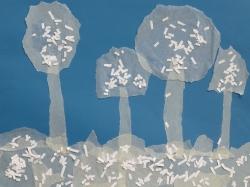 Bäume im Winter_4