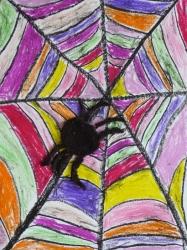 Spinnennetz_2
