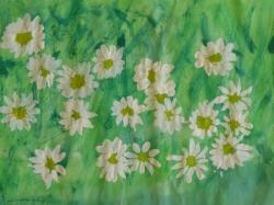 Blumenwiese_6