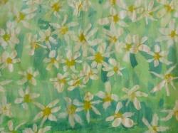 Blumenwiese_9