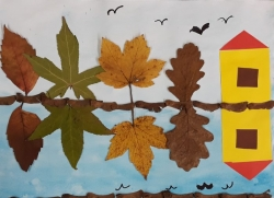 Herbstliche Spiegelungen_8