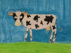 Moorriemer Kühe - Kl. 4_3
