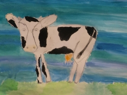 Kl. 4 - Moorriemer Kühe