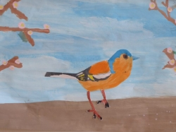 Unsere bunte Vogelwelt_1