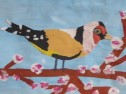 Kl. 4 - Unsere bunte Vogelwelt