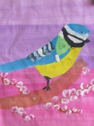 Unsere bunte Vogelwelt_5