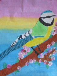 Unsere bunte Vogelwelt_8