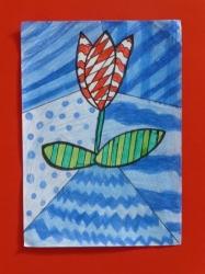 Tulpen, Kl. 1/2_2
