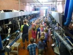 Radtour zum Melkhus und zum Bauernhof Hanken